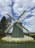 Mount Vernon, WA EUA março, 26 2015 Cada ano em April Skagit Valley Tulip Festival é realizado no ao noroeste de Washington Fotos de Stock Royalty Free
