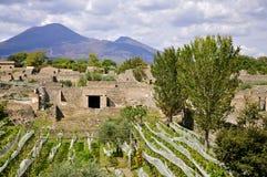 Mount Vesuvius как увидено от di Помпеи Scavi, Италии Стоковое Изображение RF