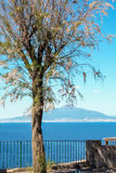 Mount vesuvius and gulf of Naples seen from Sorrento Stock Photos