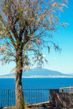 Mount vesuvius and gulf of Naples seen from Sorrento. Naples gulf and mount vesuvius seen from Sorrento Stock Photos