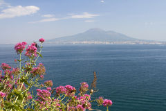 Mount Vesuvius, Italy Royalty Free Stock Photo