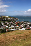 Mount Victoria,New Zealand Royalty Free Stock Photography