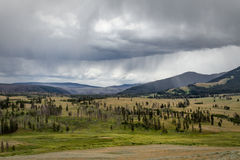 Mount Washburn. View from Mount Washburn, Yellowstone National Park royalty free stock photo