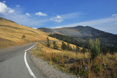 Mount Washburn In Yellowstone. This is Mount Washburn in Yellowstone National Park Stock Photo
