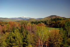 Mount Washington. NH, against a foreground of bright spring trees in a fertile river valley Stock Photography