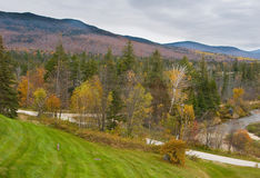 Mount Washington 3. Mount Washington, New Hampshire in background with trees in foreground during Fall Royalty Free Stock Photography