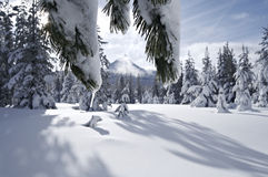 Mount Washington Snowfield Royalty Free Stock Photography