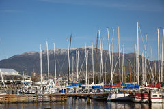 Mount Wellington. A group of yachts in the harbor in front of Tasmania's Mount Wellington Stock Images