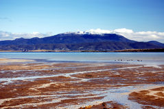 Mount Wellington. View of Mount Wellington in Hobart from Mortimer Bay, Tasmania Royalty Free Stock Photo