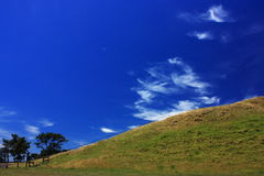 Mount Wellington in Auckland At Spring Time royalty free stock photography
