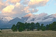 Mount White in Alpenglow of Sunrise royalty free stock photography
