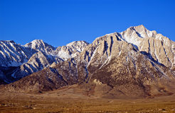 mount Whitney Obraz Royalty Free