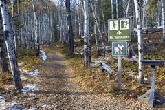 Hiking Trail Sign Aspen Forest Alberta Foothills Canadian Rocky Mountains stock image