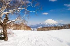 Mount Yotei Royalty Free Stock Image