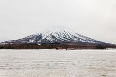 Mount Yotei with snow and snow covered on the ground with leafless trees on foothill in winter in Hokkaido, Japan.  stock photography