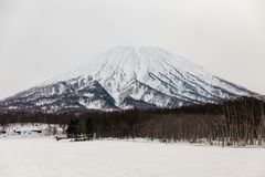 Mount Yotei with snow and snow covered on the ground with leafless trees on foothill in winter in Hokkaido, Japan.  royalty free stock photography