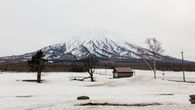Mount Yotei with snow and snow covered on the ground with house and leafless trees in winter in Hokkaido, Japan.  royalty free stock images
