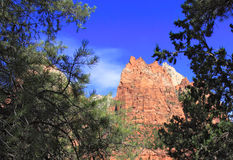 Mount Zion National Park Royalty Free Stock Photography
