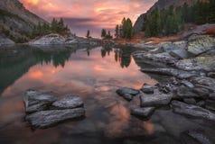 Mountain湖与杉木森林和岩石,阿尔泰山高地自然秋天风景照片的日落海岸 图库摄影
