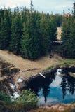 Mountain湖在云杉的森林里 库存照片