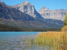 Mountain湖在亚伯大 免版税库存照片