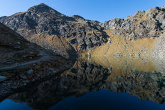 Mountain湖在多尔夫提洛尔 Spronser湖 Lago Verde 免版税库存图片