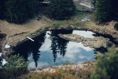 Mountain湖在蓝天背景的云杉的森林里  库存照片