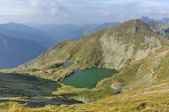 Mountain湖用鲜绿色颜色透明的水  从罗马尼亚和Fagaras山的Capra湖环境美化在夏天 免版税库存图片