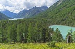 Mountain湖 Altai山,俄国 晴朗日的夏天 图库摄影