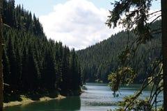 Mountain蓝色湖在夏天森林里 免版税库存照片