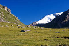 Mountain. Snow lay on peak of mountains, green grass Royalty Free Stock Photography