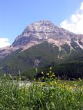 Mountain. A mountain in the Canadian Rockies Royalty Free Stock Image
