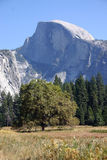 Mountain. Nice view on the half dome Stock Image