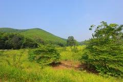 Mountain. The mountain at Kao Yai Royalty Free Stock Photography