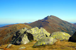 Mountain. Slovak mountain Low Tatras in the summer Stock Photography