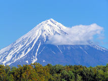 Mountain. Blue mountain with sky and forest stock image