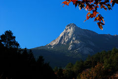 Mountain. View at autumn with red leaves Royalty Free Stock Image