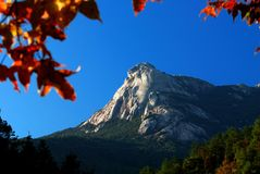 Mountain. View at autumn with red leaves Royalty Free Stock Images
