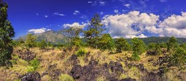 Mountain Abang Kintamani/Bali/. Summer view of Mount Abang Kintamani with trees in the foreground/Bali-Indonesia Royalty Free Stock Photos