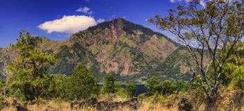 Mountain Abang Kintamani/Bali/. Summer view of Mount Abang Kintamani with trees in the foreground/Bali-Indonesia Royalty Free Stock Image