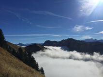 Mountain. Above the clouds trees, mountain top Royalty Free Stock Image