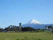 Mountain Across Field. A snow-covered Mount Taranaki from across a field on a cloudless spring day in New Plymouth, New Zealand royalty free stock photo