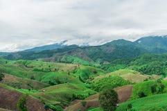 Mountain agriculture Stock Photos