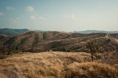 Mountain agriculture in Nan,Thailand Royalty Free Stock Photos