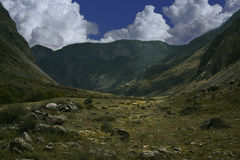 Mountain altai Royalty Free Stock Photo