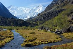 Mountain Altai. Royalty Free Stock Photo