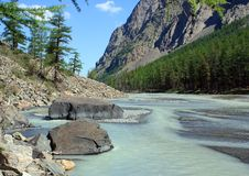 Mountain Altai. The river Maashej. Royalty Free Stock Photography