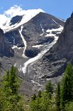 Mountain Altai Russia - August 2017 vertical view of the glacier small Aktru made in clear sunny weather framed by green coniferou Stock Photo