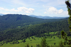 Mountain Altai summer Stock Image