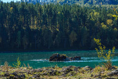 Mountain Altai Royalty Free Stock Photography